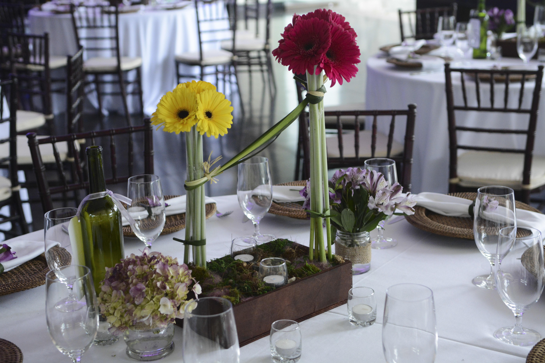 maria-elliott-gerbera daisies centerpieces